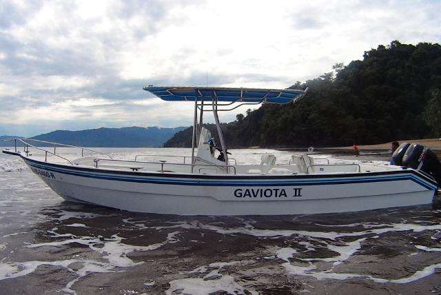Antillano 32 pies, 2 motores 115 HP 4 tiempos, outrigger, sonar, GPS, capit�n, marinero... capacidad 4 pescadores.